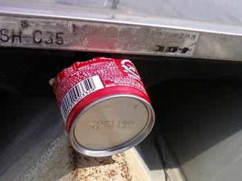 空き缶をかぶせて保護